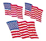 Bulk Roll Prismatic Stickers, American Flags (100 Repeats)