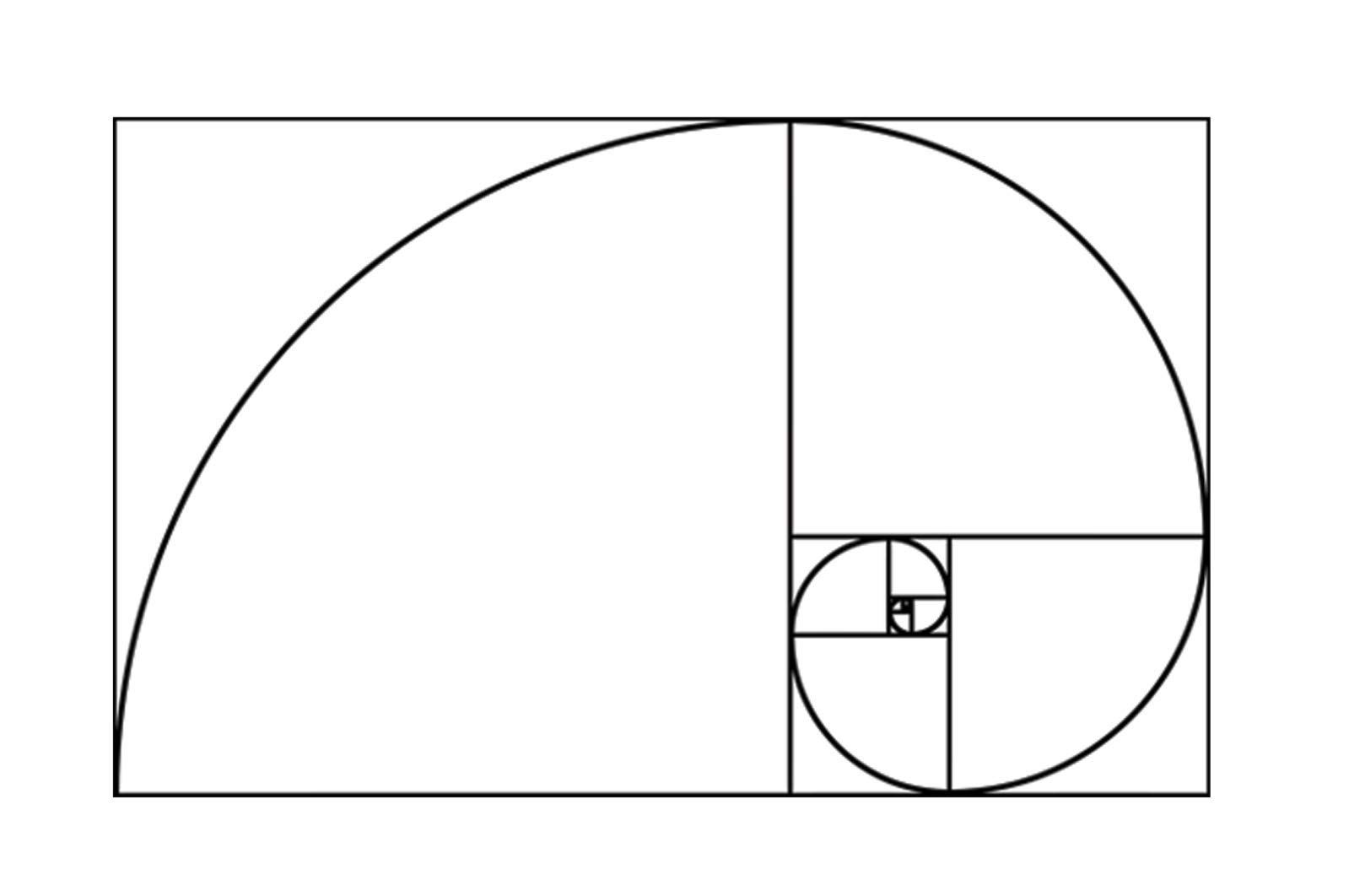 Frankies Cajun Customs Fibonacci Spiral Golden Ratio Vinyl Decal, Wall, Car, Laptop - Brown - 50 inch