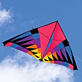 Into The Wind Sweet 16 Single Line Delta Kite