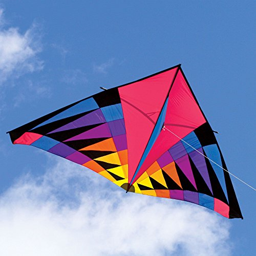 Into The Wind Sweet 16 Single Line Delta Kite by Into The Wind