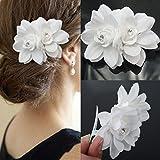 white hair clips - AKOAK New Beauty Women's Bridal Wedding Rhinestone Orchid Hair Clip Barrette Bridal Wedding Party Women Accessories (1Pcs,White)