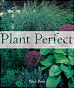 Plant Perfect: Designing With Plants For The Modern Garden: Neil Ross:  9781869416256: Amazon.com: Books