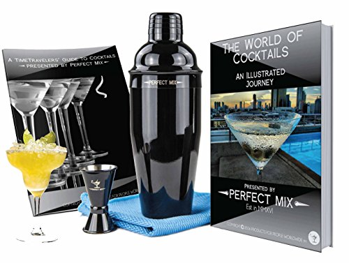 Pro Stainless Steel Cocktail Martini Shaker Set w/ Jigger, Tote & Bar Recipes (Drink Mixer With Recipes compare prices)