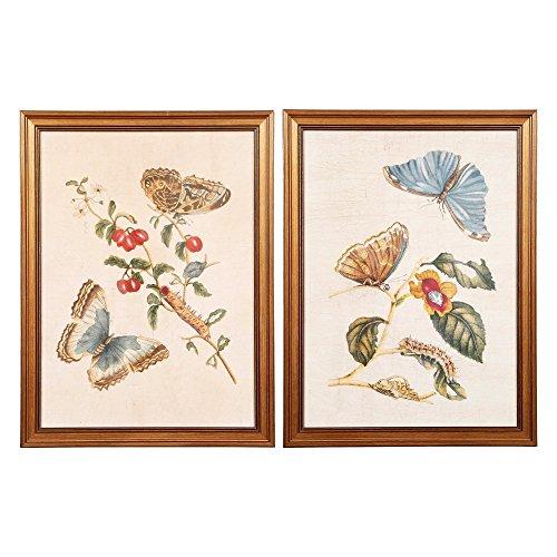 Jane Seymour Antique Butterfly Wall Art Prints - Set of 2