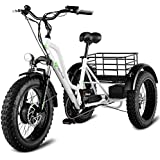 """Goplus Electric Trike 20"""" Fat Tire Electric Tricycle for Adults 48V 10AH Lithium Battery 500W 3-wheeled Electric Bike Front and Rear Disc-brake with LCD Display"""