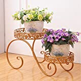 ZX Shelves 2 Pot Flower Tower with elegant and beautiful design; Flowerpot display stand (color : Gold)
