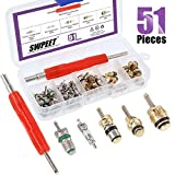 Swpeet 51Pcs R12 / Green R134a AC Master Valve Cores Repair Kit, Including Assortment R12 R134a Valve Core Refrigeration Tire Valve Stem Cores with Remover Tool for Most Cars