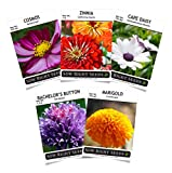 Sow Right Seeds - Flower Seed Garden Collection to Plant, 5 Packets, Marigold, Zinnia, Cosmos, Cape Daisy, and Bachelor Button; Full Instructions for Planting, Gardening Gift