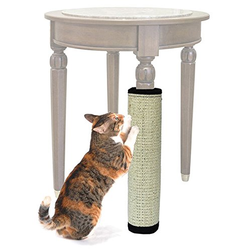 Shalleen 44x31cm Pet Cat Kitten Scratching Pad Mat Board Sisal Scratcher Post Pole Toy (Record Player Scratcher)