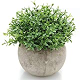 Velener Mini Plastic Artificial Plants Benn Grass