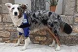 Dog Lying Callosity Bandage / Dog Elbow Bandage / Dog Hygroma Bandage (L, Black)