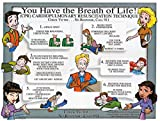 Brady 18'' X 24'' Full Color On White Paper Prinzing CPR Training Poster''PRINZING CPR TRAINING POSTER TUBED''