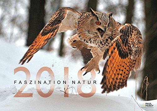 Faszination Natur Kalender 2018  Das Bild Aus WILD UND HUND