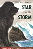Front cover for the book Star in the Storm by Joan Hiatt Harlow