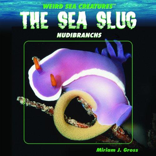 The Sea Slug: Nudibranchs (Weird Sea Creatures)