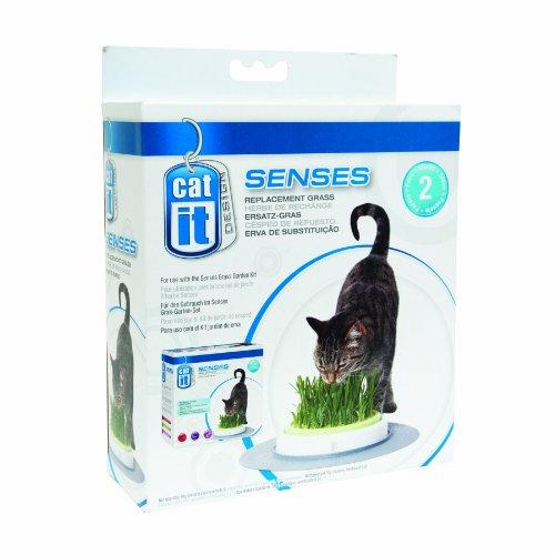 Catit Design Senses Grass Garden Refill Kit – 2-Pack, My Pet Supplies