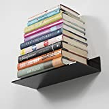 Acrylic 14 Inch Compact Office Organizer Shelves Set of 2 Black
