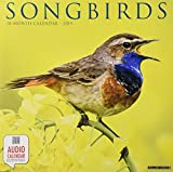 Songbirds 2019 Wall Calendar
