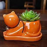 Cat Mini Flower Pot Succulent Planter (Orange)