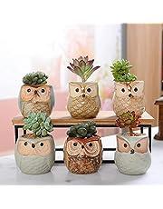 6pcs Ceramic Owl Flower Pots Planters Flowing Glaze Base Serial Set Ceramic Planter Desk Flower Pot Cute Design Succulent Plante Ztoyby
