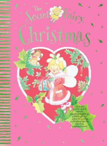Download The Secret Fairy Christmas pdf epub
