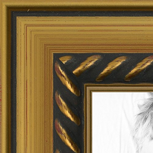 ArtToFrames 16x20 inch Gold with Rope Wood Picture Frame, WOMTM31-30-16x20 (Gold Rope Frame)