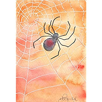 Spooky spider Blank Note Card Assortment: 6 Blank Artistic All Occasion Watercolor Cards, with Envelopes - Halloween Spider Web