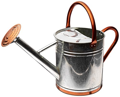 Gardman 8330 Galvanized Watering Can with Copper Accents,  1.9 Gallon ()