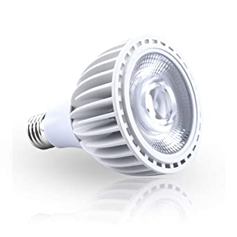 Luxvista 40W Par30 E27 Potente Foco Sumergible Lámpara Bombilla Proyector LED Spot para Piscina, Fuentes