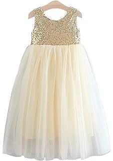 Amazon.com: Vestido de tutú de tul sin espalda para niña ...