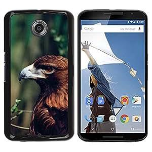 PC/Aluminum Funda Carcasa protectora para Motorola NEXUS 6 / X / Moto X Pro eagle summer green branch nature brown / JUSTGO PHONE PROTECTOR