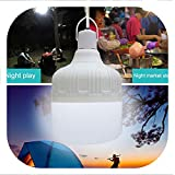 Led Bulb Rechargeable Night Light Portable Emergency Lights With Battery For Outdoor Barbecue Hanging Light For Patio Porch Garden,20W