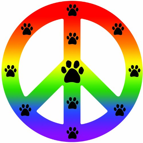 imagine-this-peace-car-magnet-sign-rainbow-41-2-inch-by-4-1-2-inch