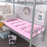 GJFLife Collapsible Thickened Tatami Mattress Topper Futon, Breathable Dormitory Mattress Protector Sleeping pad Bed mats-D 90x200x10cm