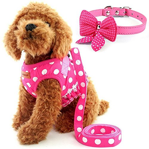 Cute Small Dog Harness, Ladies Polka Dots Dog Vest Harness Set with Pink Leash and Bowknot Collar, 3 in 1 Girl Style Vest Harness Set for Puppy and Cat (L, Pink) ()