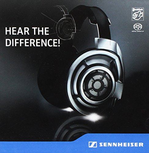 Price comparison product image Sennheiser Hd 800-Klang V