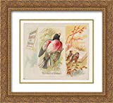 Allen & Ginter - 22x20 Gold Ornate Frame and Double Matted Museum Art by Museum Prints Titled: Rose-Breasted Grosbeak, from The Song Birds of The World Series (N42) for Allen & Ginter Cigarettes