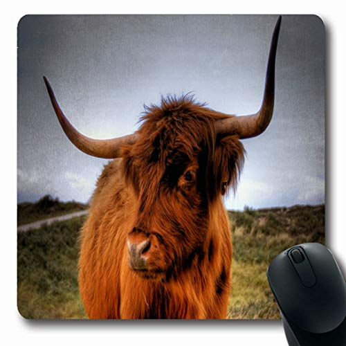 - Ahawoso Mousepads for Computers Red Cow Scottish Highlander Wildlife Scotland Culture Nature Brown Bull Angus Highland Beef Cattle Oblong Shape 7.9 x 9.5 Inches Non-Slip Oblong Gaming Mouse Pad