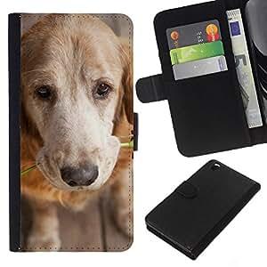 KLONGSHOP // Tirón de la caja Cartera de cuero con ranuras para tarjetas - Amor del golden retriever Rose - HTC DESIRE 816 //