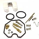 SMP - Pz26 Carburetor Repair Kit Compatible with