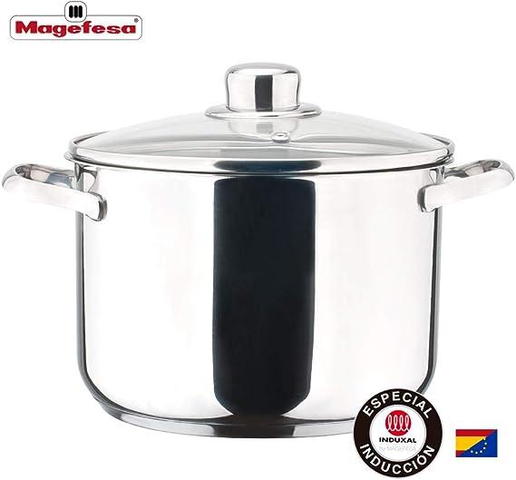 MAGEFESA Dux – La Familia de Productos MAGEFESA Dux está Fabricada en Acero Inoxidable 18/10, Compatible con Todo Tipo de Fuego. Fácil Limpieza y Apta lavavajillas. (Olla, 20_cm): Amazon.es: Hogar