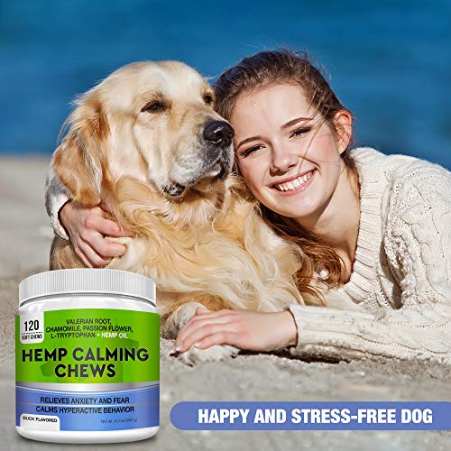 51oUdv3t90L - GOODGROWLIES Calming Hemp Treats for Dogs - Made in USA with Hemp Oil - Anxiety Relief - Separation Aid - Stress Relief During Fireworks, Storms, Thunder - Aggressive Behavior, Barking - 120 Chews