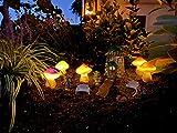 Solar Mushroom Light, Solar Powered Decorative