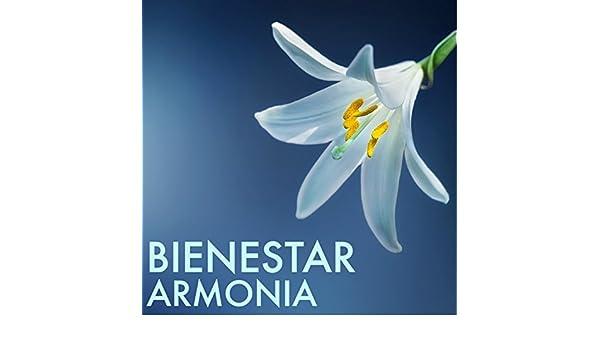 Canciones de Fundo para Clases de Yoga by Armonia Florez on ...