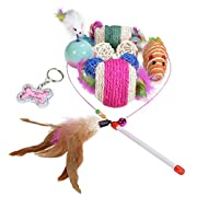 Amazon Lightning Deal 80% claimed: HTKJ Cat Toys Variety Pack for Kitty 10pcs, Feather Wand, Sisal Rope Ball Catnip Chew Mice, Pet ID Tag for Dog Cat