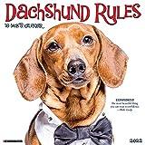 Dachshund Rules 2022 Wall Calendar (Dog Breed)