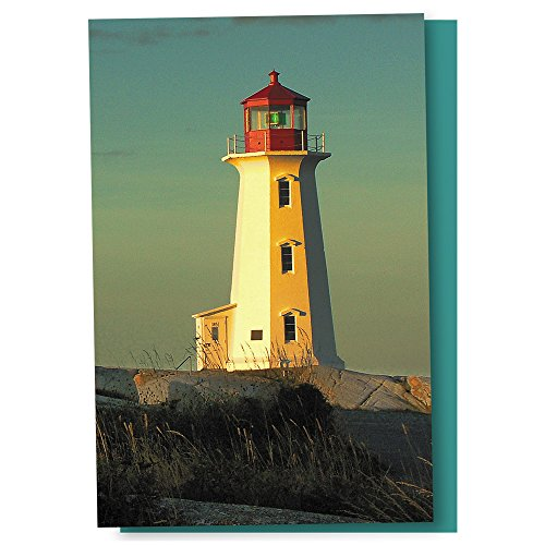 Tree-Free Greetings EcoNotes 12 Count Lighthouse Point All Occasion Notecard Set with Envelopes, 4 x 6 Inches (FS56931)
