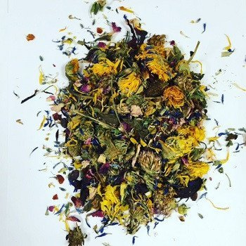 Image of Small Pet Select - Flower Power Berry Boost Herbal Blend