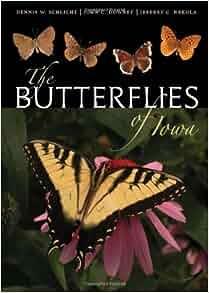 The Butterflies Of Iowa Bur Oak Book By Schlicht Dennis border=