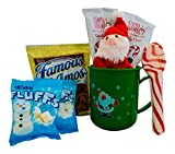 Christmas Hot Cocoa Gift For Kids - Candy Cane Hot Chocolate, Marshmallows,Cookies, Plush , and a Candy Cane Spoon in a Plastic Mug -Great Gift For Children or Grandchildren (Green Mug, Santa Plush)